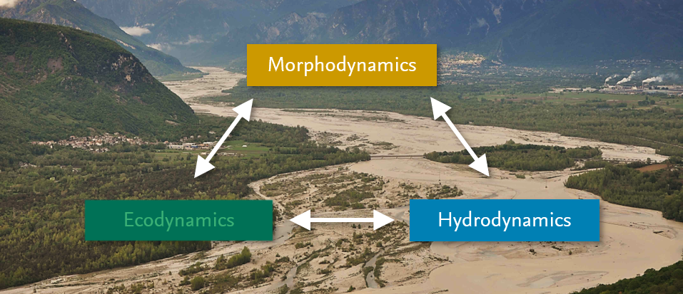 Hydraulic Engineering and River Morphology