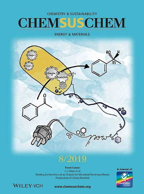 Front cover of the ChemSusChem 8/2019 issue.