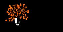 Logo Braunschweiger Nachwuchsvortragsreihe