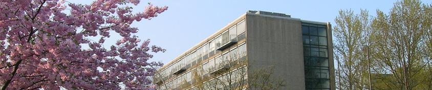 Institutsfoto mit Kirschblütenbaum