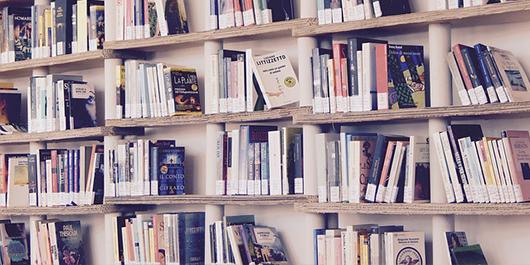 Bibliothek Regal Bücher