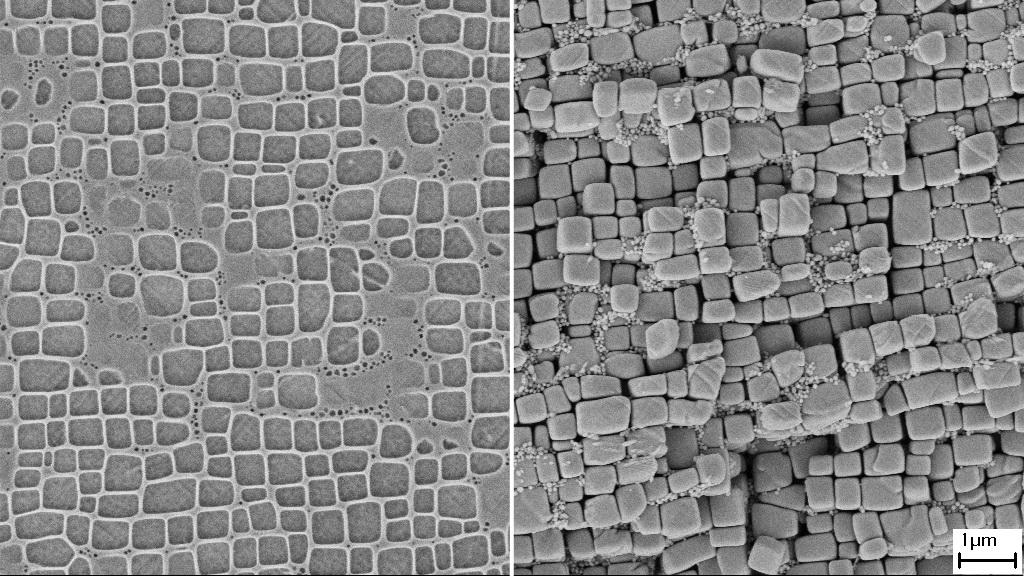 Nickelbasis-Superlegierung CMSX-4 vor der Extraktion (links) und nach der Extraktion (rechts).