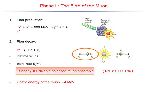 Myon Methode 2