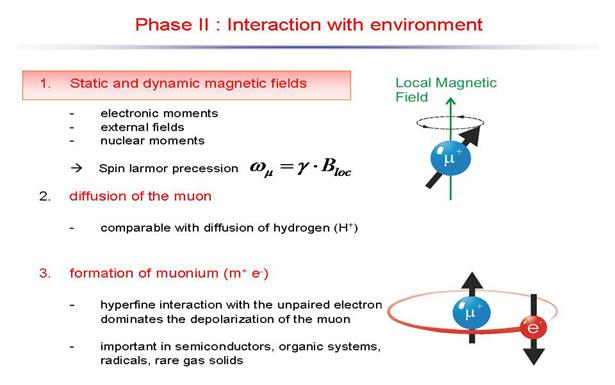 Myon Methode 3