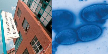 Zwei Bilder vom Eingang des Biozentrums und von gefärbten Zellen unter dem Mikorskop