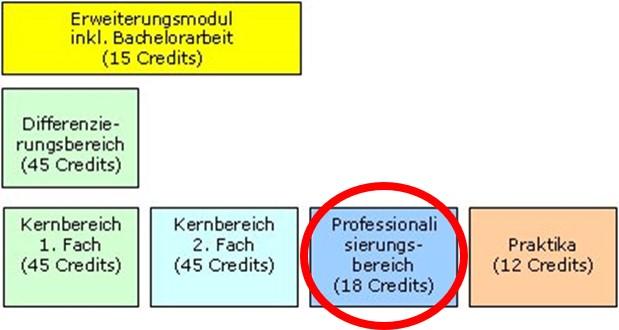 grafik_professionalisierungsbereich