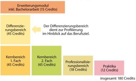 Studienstruktur Bachelor