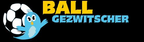 Ballgezwitscher Logo