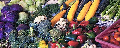 H4U Vegetarisch