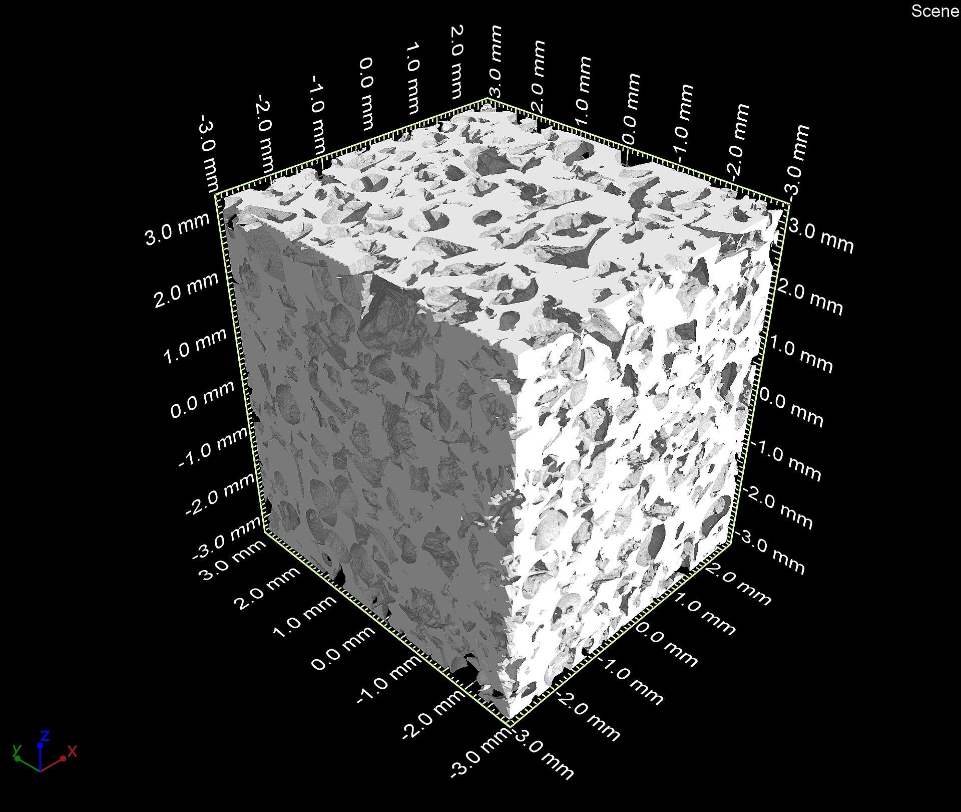 Dreidimensionale Darstellung von porösem Aluminium mit Hilfe des Computertomographen: Oberfläche der Probe