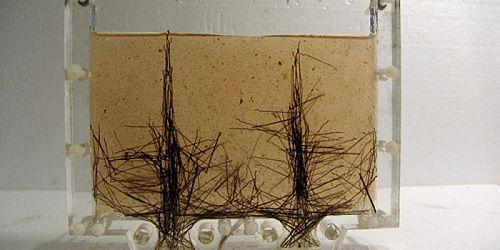 Magnet controlled rearrangement of steel fibres