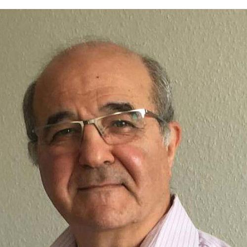 Wael Adi