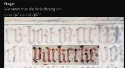 MAppBS, Sprachgeschichte